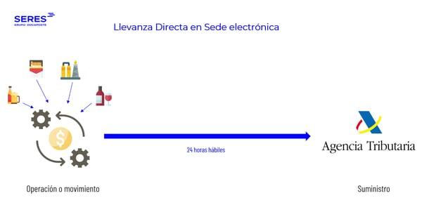Llevanza Directa Sede Electrónica