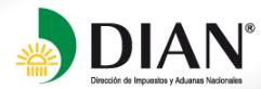dian_logo.png